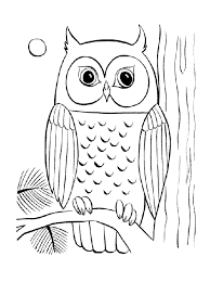 Big Eyed Owl Adult Coloring Pages Owls Beauty