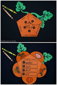 Pumpkin Pumpkin By Jeanne Titherington by Best 25 Pumpkin Life Cycle Ideas On Pinterest Cycle Of Life