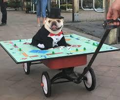 Old Westbury Gardens Dog Halloween by Fall Family Festival Returns To Hicks Nurseries