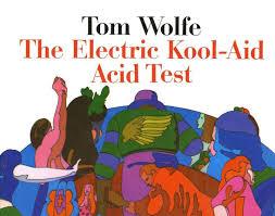 Martin Klasch The Electric Kool Aid Acid Test