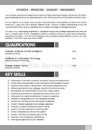 Government Resume Example Public Service Resumes