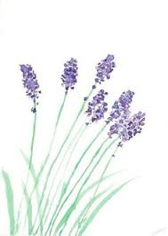 Watercolour Lavender For Invites This Shape Or Maybe Wisteria Would Be A Nice Simple Design Invitation Decorating