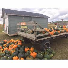 Heather Farms Pumpkin Patch by The Moose Mountain Pumpkin Patch Home Facebook