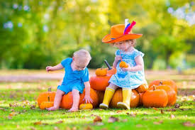 Sarasota Pumpkin Festival by 18 October Events And Festivals In Sarasota Manatee U0026 Charlotte