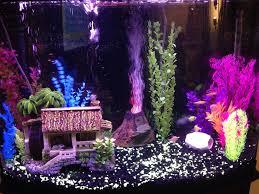 Spongebob Fish Tank Ornaments Uk by 115 Best Aquarium Inspiration Images On Pinterest Aquarium Ideas