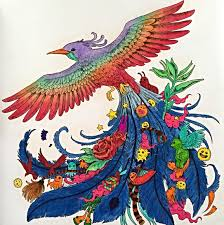 Animorphia By Kerby Rosanes Adult ColoringColouringColoring BooksBook
