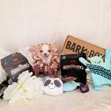 Barkbox Coupon Codes Bark Box Coupons Arc Village Thrift Store Barkbox Ebarkshop Groupon 2014 Related Keywords Suggestions The Newly Leaked Secrets To Coupon Uncovered Barkbox That Touch Of Pit Shop Big Dees Tack Coupon Codes Coupons Mma Warehouse Barkbox Promo Codes Podcast 1 Online Sales For November 2019 Supersized 90s Throwback Electronic Dog Toy Bundle Cyber Monday Deal First Box For 5 Msa