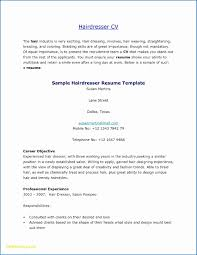 100 Resume Summary Examples Entry Level Cosmetologist Professional 15
