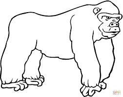 Popular Gorilla Coloring Page 63