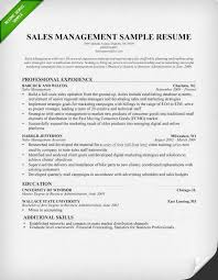 Sales Manager Resume Example Examples On Objective