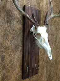 Moose Shed Antler Mounting Kit by Pink Harvest Plaque With Grey Trim Shown With European Skull Mount