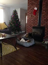 Christmas Tree Shop Jobs Albany Ny buck land u0026 cattle co real estate your real estate company for