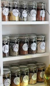 Pantry Cabinet Shelving Ideas by 153 Best Pantry Storage Images On Pinterest Home Kitchen And