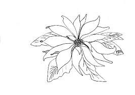 Picture Of Poinsettia Coloring Page