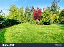 Beautiful Green Farm House Backyard Green Stock Photo 177038729 ... Playful Dog Running Away From Ball White Labradoodle Putting Greens Golf Just Like Grass Tour Backyard Green Cost Synlawn Itallations Reviews Testimonials Our Diy Kids Theater Emily A Clark Unique Architecturenice Little Bit Funky How To Make A Backyard Putting Green Wood Fence On Colorful House Stock Vector 606411272 Concrete Ideas Hgtvs Decorating Design Blog Hgtv Puttinggreenscom One Story Siding With Lawn View From The