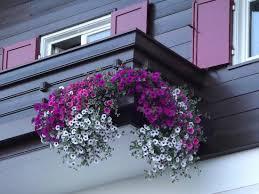 Balcony Decoration Flowers Hotel