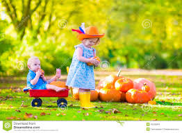 Pumpkin Picking Patchogue Ny by Happy Day Farms Pumpkin Patch Home Facebook