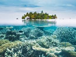 100 Maldives Beaches Photos Top 25 Best Island For Swimming And Snorkeling Cond Nast