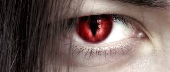 Halloween Prescription Contacts Uk by Could Your Halloween Contact Lenses Cause Blindness Freedom Vision
