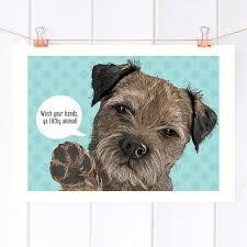 border terrier pop badezimmer wand kunstdruck