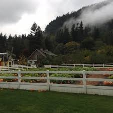 Pumpkin Patch Issaquah by Fox Hollow Family Farm 107 Photos U0026 91 Reviews Attraction