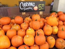 Types Of Pumpkins For Baking by Whole Foods Market Your One Stop Shop For Pumpkins This Fall