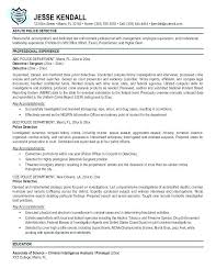 Law Enforcement Objective Resume Template Police Examples The Information Site