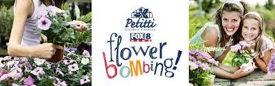 Hello Flower Bombing Promo 1 Petitti Garden Center