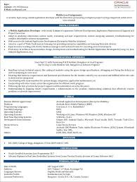Resume Examples For 2 Years Experience Plus Adorable Sample Format In