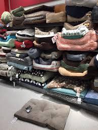 enough dog beds yelp