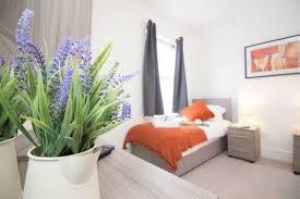 grüne zimmerpflanzen und heilkräuter die unser schlaf