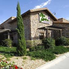 Olive Garden restaurant s a rare rave review by 85 year old