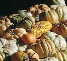Tulsa World Pumpkin Patch by Your Guide To Halloween Parties Parades Pumpkin Patches And
