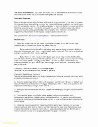 Senior Financial Analyst Resume Sample Perfect Summary New Skills
