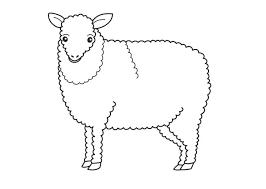 Printable Sheep Coloring Pages For Kids Lamb Animal
