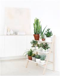 Full Image For Plant Ledge Decor Ideas 17 Images About Shelves On In