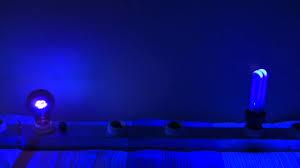 incandescent vs fluorescent black light 2011