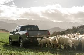 Honda Super Bowl Ad Uses Sheep, Classic Rock To Plug New Ridgeline Chevy Response To Ford On Silverado 2012 Super Bowl Ad Luxury Trucks Commercial 7th And Pattison Dodge Truck Pictures 2014 Chevrolet Autoblog Inspirational 2015 Preview Chevys Next Potentially Win 100 Romance Hd Truckin 2500hd Reviews Colorado Offroadcom Blog Mvp Cars Sicom