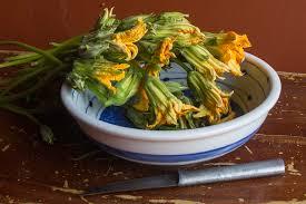 Fried Pumpkin Blossoms by Stir Fry Pumpkin Flower Chaa Lapeau