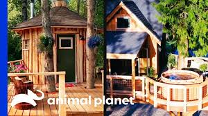 100 Tree Houses With Hot Tubs Super Chill Sauna Vs Tub Rumpus Room House Masters YouTube