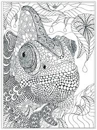 Printable Advanced Coloring Pages And Free Doodles Color By Number