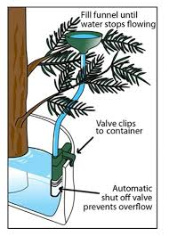 Xmas Tree Waterer by Auto Stop Christmas Tree Watering System Ws02 Free Shipping