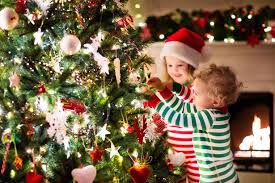 Which Christmas Tree Smells The Best Uk by When Should You Put Up Your Christmas Tree Our Tree Guide Has
