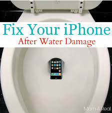 How I Fixed My iPhone After It Fell In The Toilet Mom 4 Real