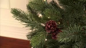Balsam Fir Artificial Christmas Trees by Austrian Artificial Christmas Tree Youtube