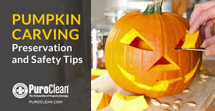 Preserving A Carved Pumpkin by Pumpkin Carving U2013 Preservation And Safety Tips Water Damage