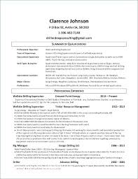 Short Resume Example Awesome Summaries For A Professional Summary Good Go Of