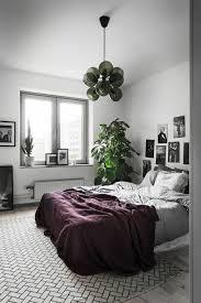 plante verte dans une chambre à coucher plante verte chambre a coucher evtod dans une