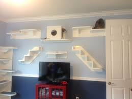 box wall shelves wooden shelves display case display shelf wood