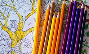 Have You Got Your Adult Colouring Book Yet